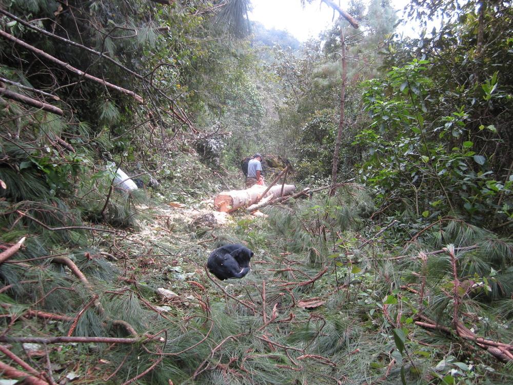 2015-01-09_Guatemala_Dylan_Pu.Ying.Huang502.JPG