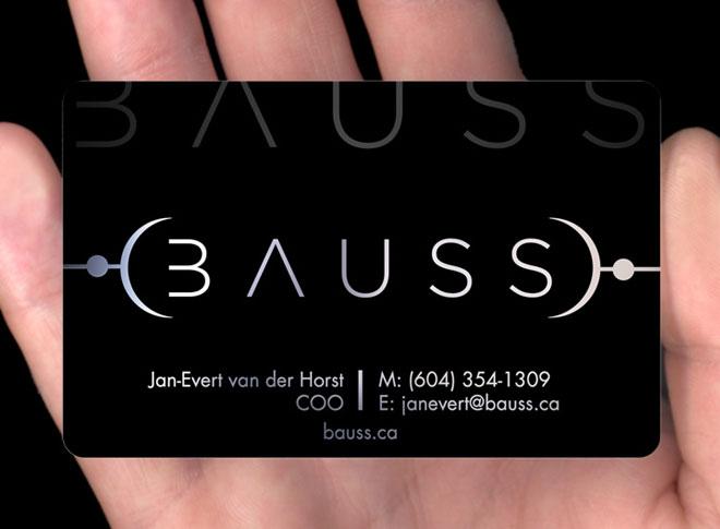 bauss.jpg