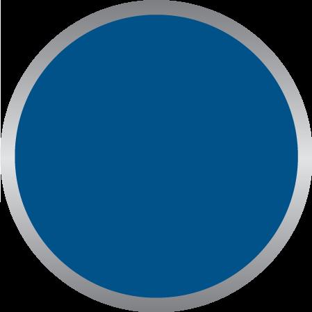 Blue PMS 2935C