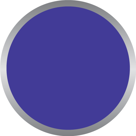 Deep Blue PMS2736C