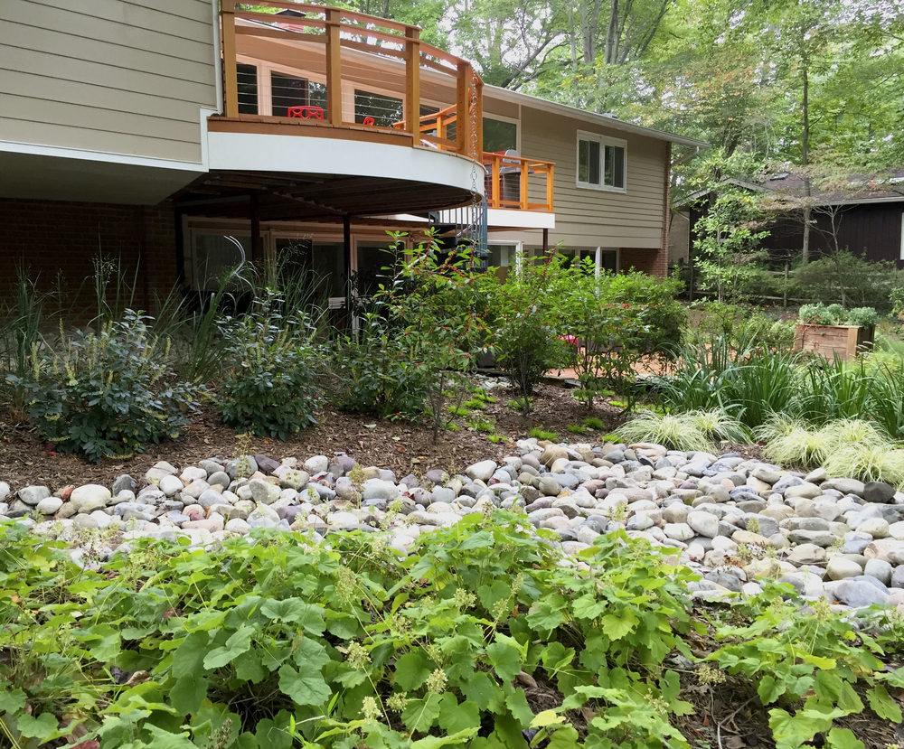 Lisa Wilcox Deyo Landscape Architecture - Roots Landscaping
