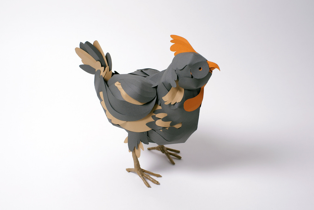 Chicken 1edit.jpg