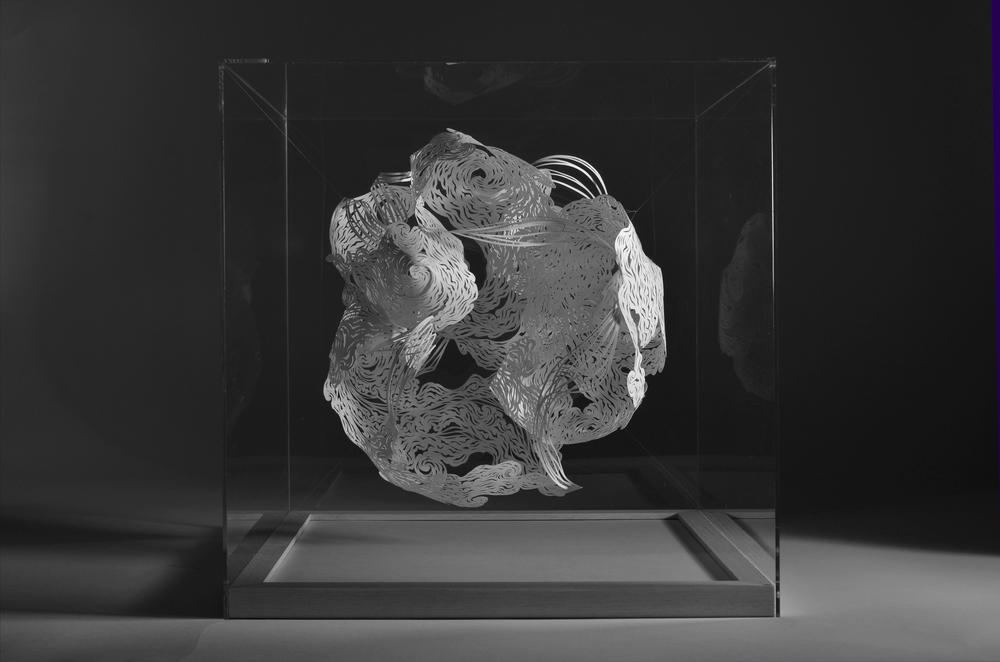 Large Nebula Form 1 - (mid).jpg