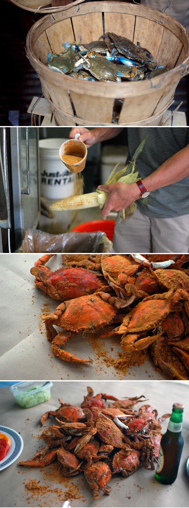 Fresh Crabs from the Chesapeake Bay