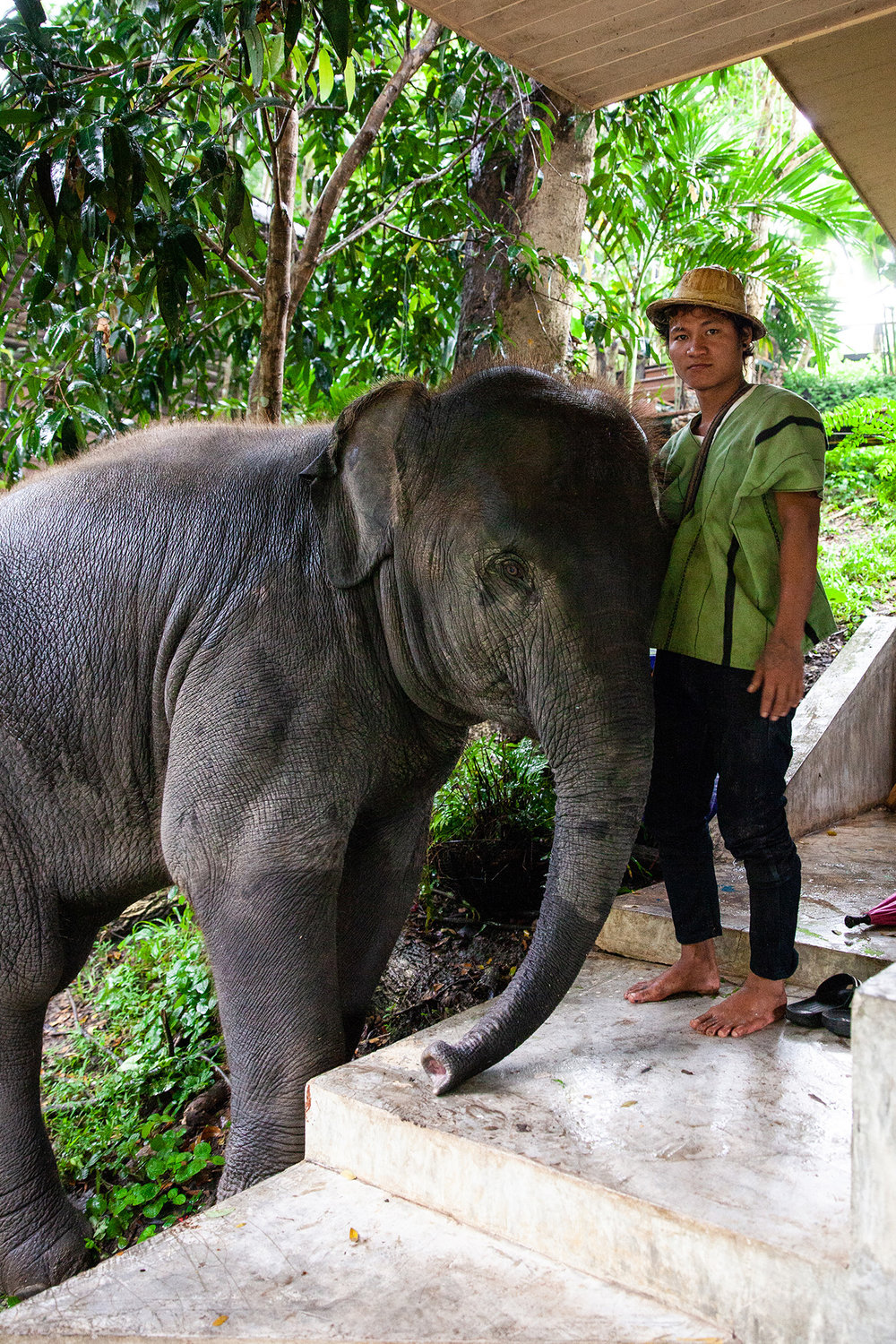 Tang Mo the elephant and her mahout Gola