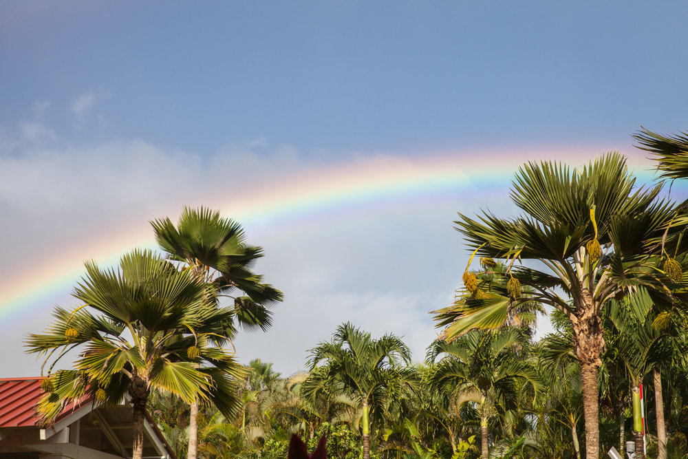 saw countless rainbows in HI, living up to it's reputation as the rainbow state