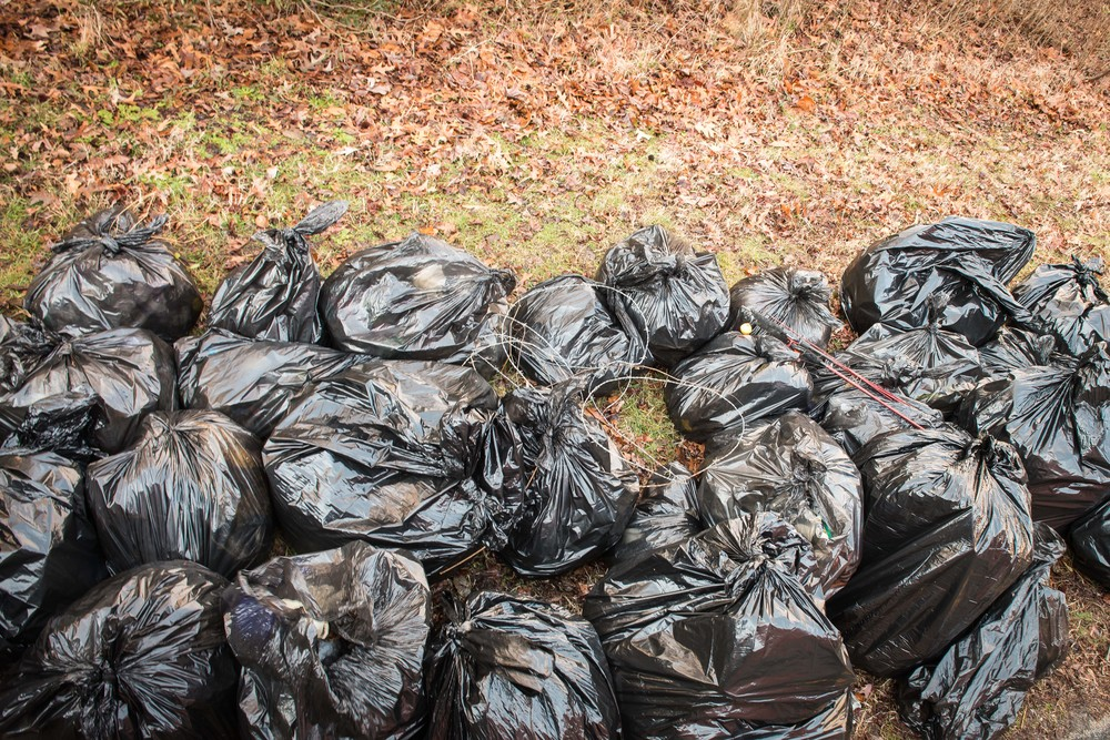 All of this trash was in the nature park. Thanks to USS Abraham Lincoln, the Sandy Bottom Nature Park is clean.