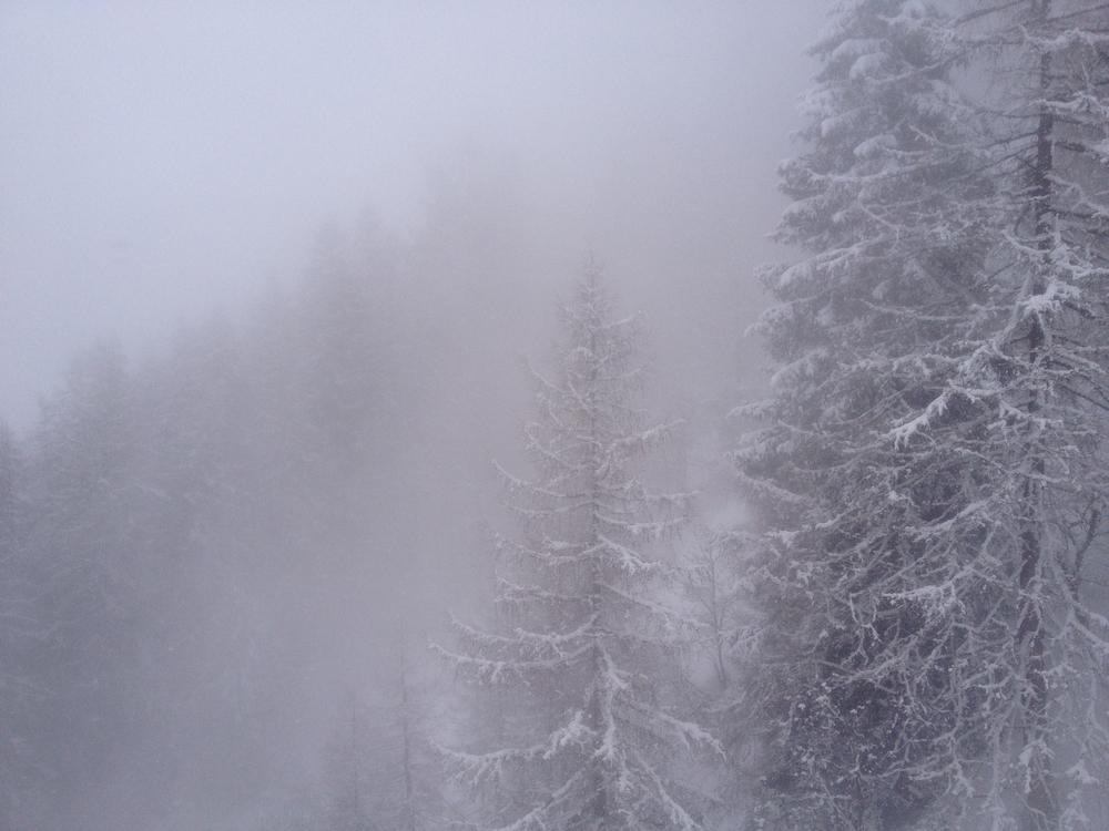 2012-03-19 13.01.13.jpg