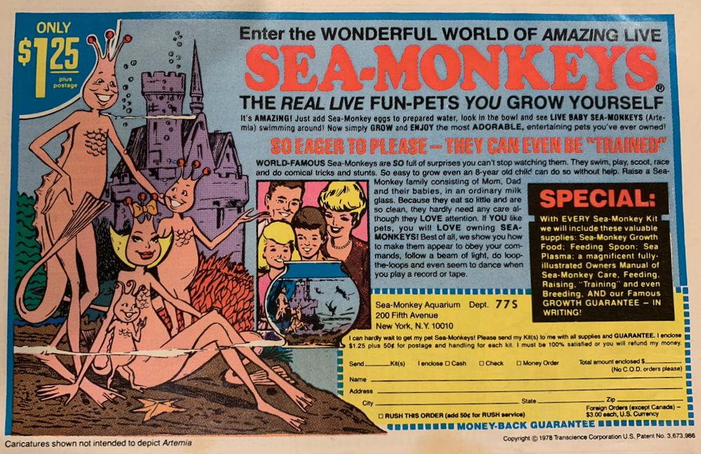 A full page ad in my 1970s era comic books