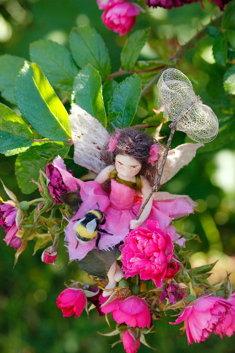 Lavender & Lark Rose Bush.jpg