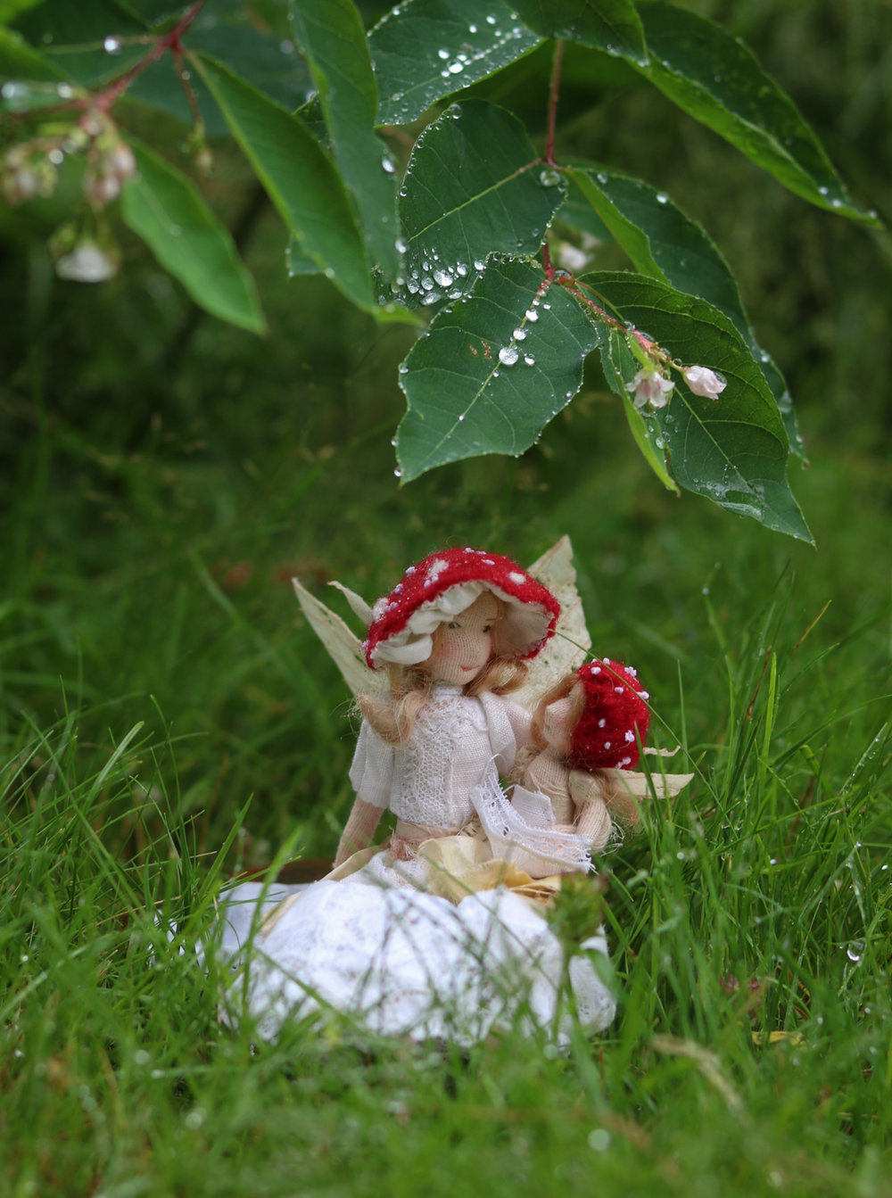 Toadstool Faeries by Lavender & Lark