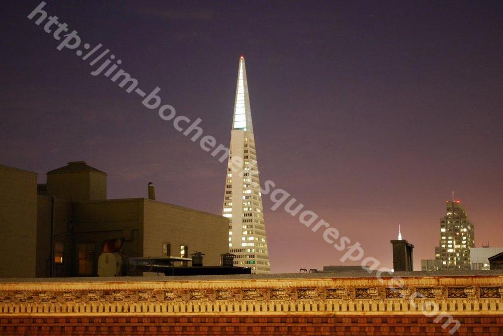 Transamerica from Fairmont Roof Garden SF 4-09.jpg