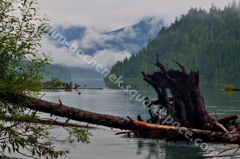 Cheakamus Trail Lake Whistler 7-12 (2).jpg