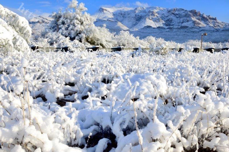 Superior Snow 1-1-15_237.jpg