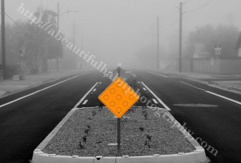 Fog 2-1-15_32.jpg