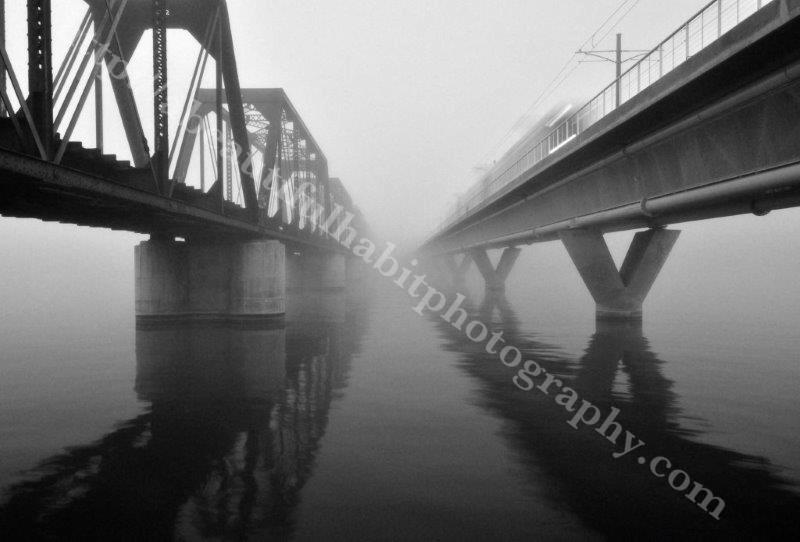 Fog 2-1-15_42.jpg