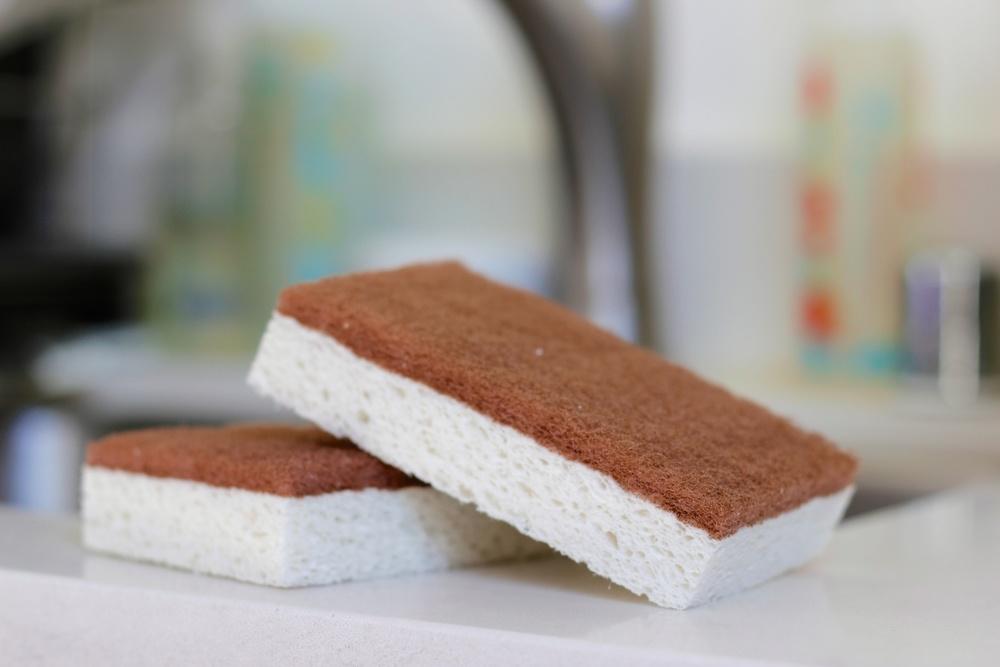 Sponges 001.jpg