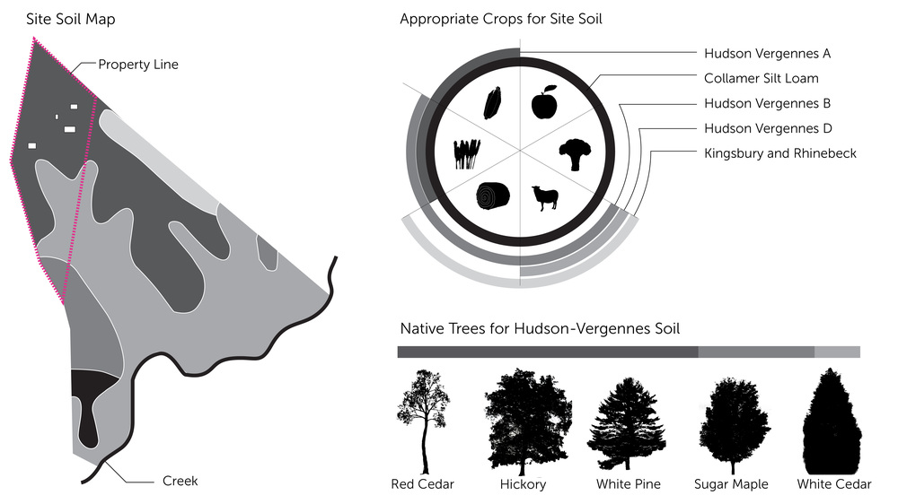 HUDSON VALLEY SOIL NATIVE TREES FARMING