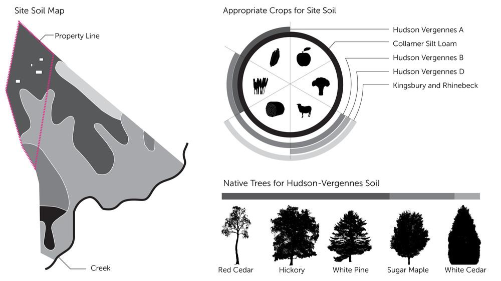 HUDSON VALLEY SOIL NATIVE TREES FARMING
