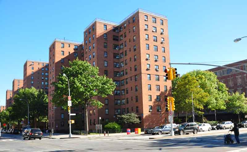 NYCHA DESIGN TRUST WALD NEW YORK AVENUE D