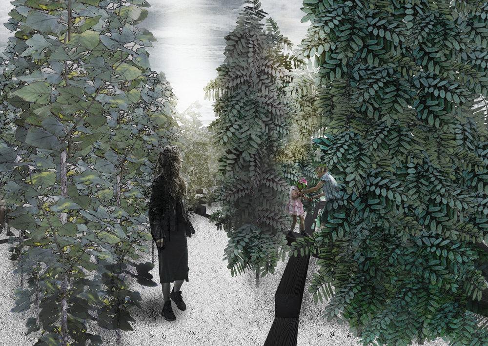 P07_Garden Perspective.jpg