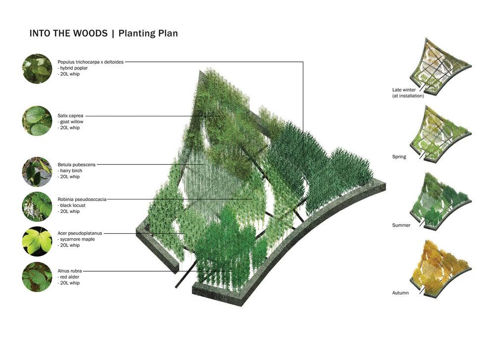 Planting_layout.jpg