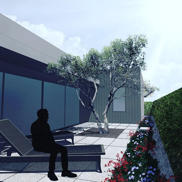 One of the great thrills comes when you see what you've imagined and drawn become a physical reality. . . . . #fieldwork #rendering #landscapeconstruction #courtyardgarden #onetreegarden #thisislandscapearchitecture #specimentree #quercusagrifolia #coastliveoak #suspendedpavement