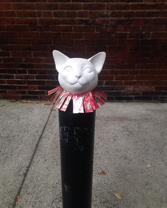 Hidden gem around the corner from the office. There's never a limit to being festive! ☃😺🎄 #holidaycats #catsofinstagram #cocacola #festiveholidays #philly #rittenhouse #dogwalking #petsitting #philapets