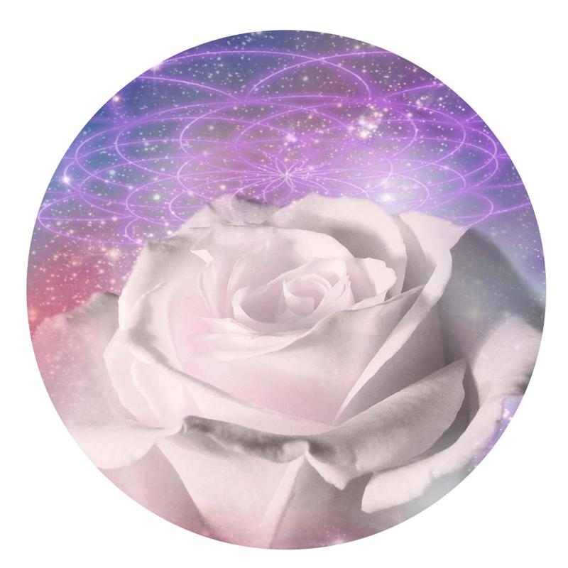 Maia Mystery School: Seven Sisters Circle - Rebirth of the Divine Feminine