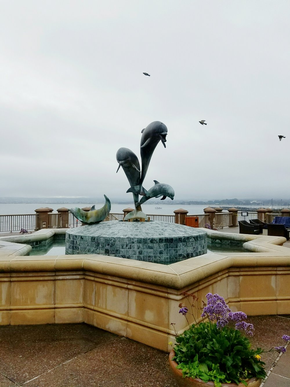 The Monterey Bay Inn dolphin sculpture overlooking the bay with morning fog.