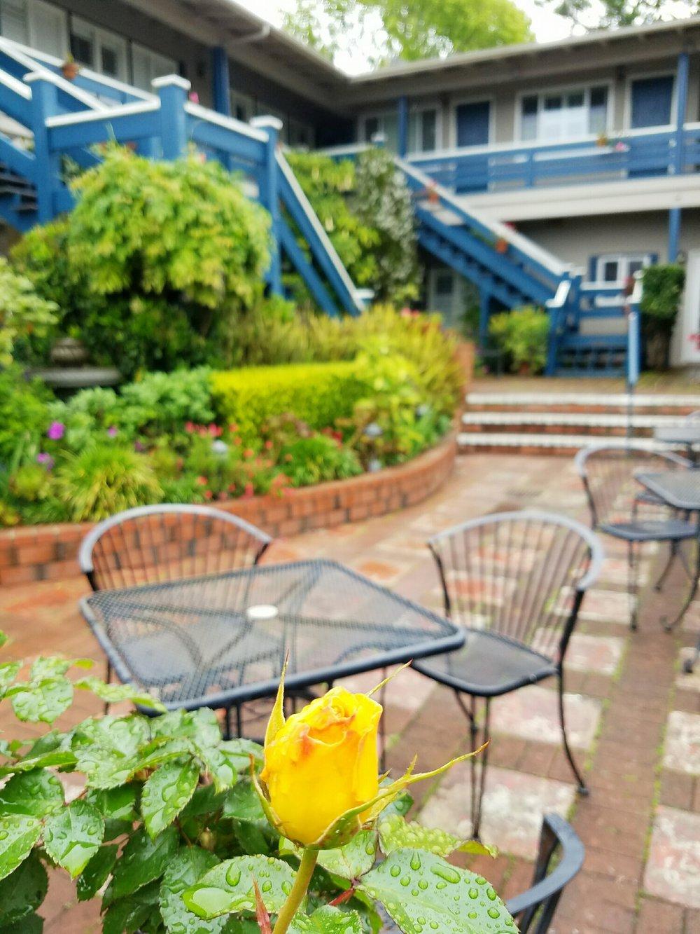 The courtyard garden at the Carmel Wayfarer Inn.