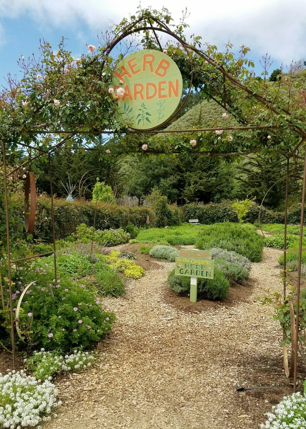 The Earthbound Farm's herb garden in Carmel Valley, CA