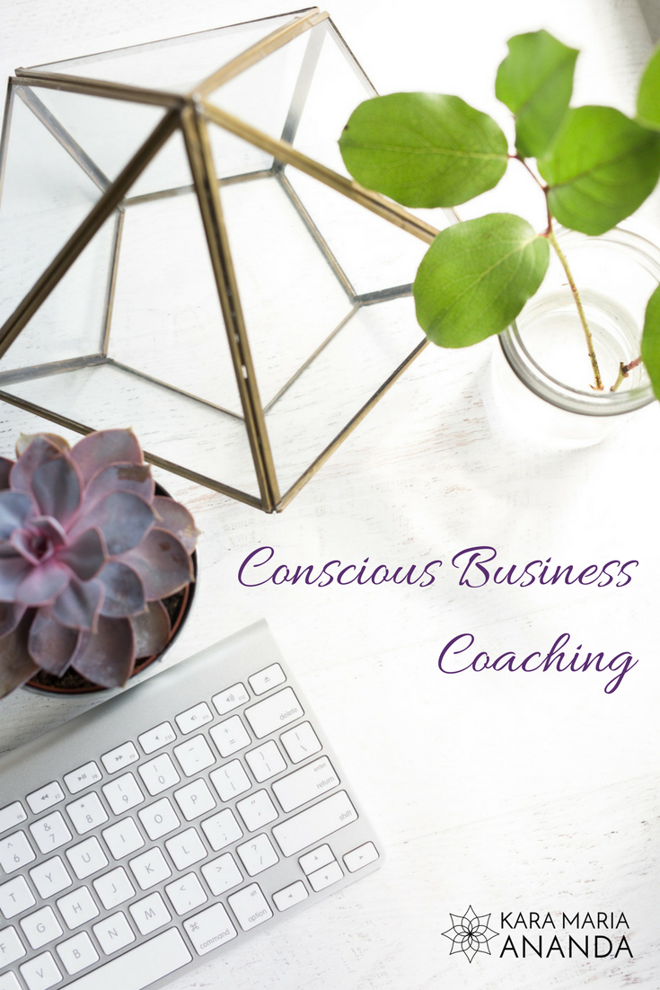 Conscious Business Coaching