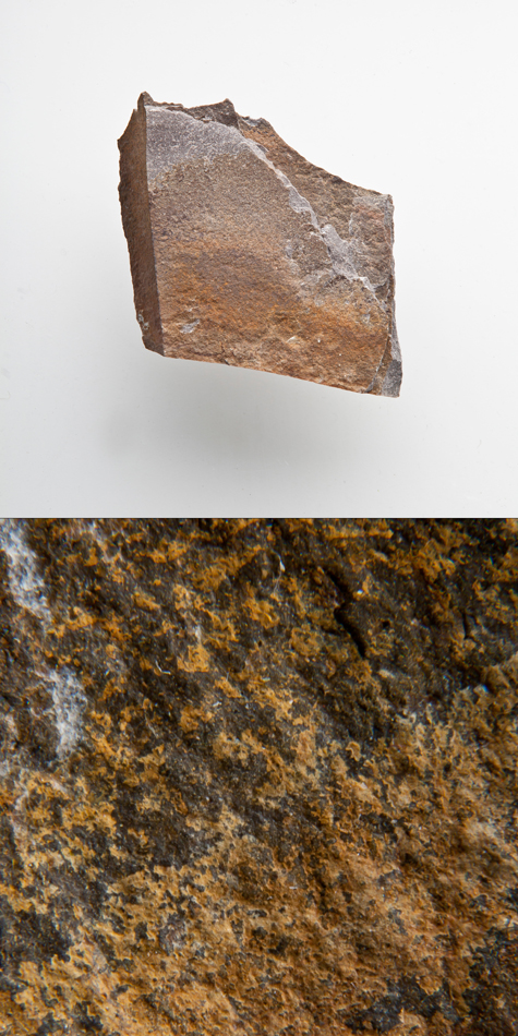Fine Grained Quartzite-Palms Formation.jpg