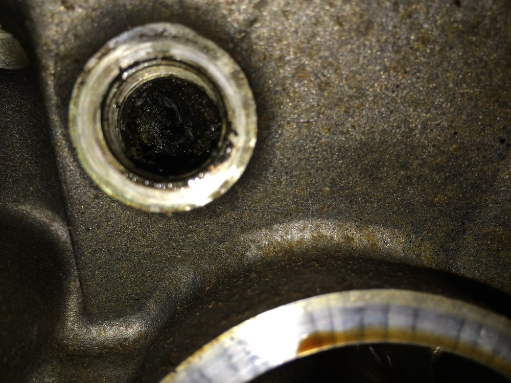 Dried oil packed behind the drain plug.  This is the passenger side plug; the oil filter attachment point is just below here, with the top edge visible at the bottom of the image.