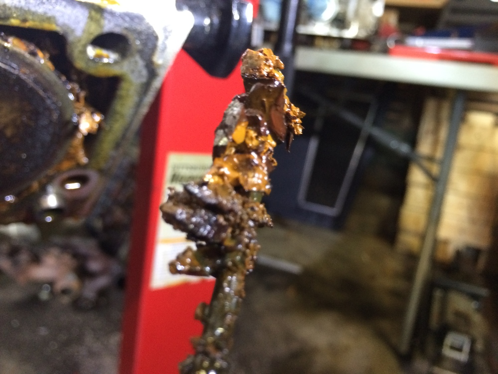 A bunch of gunk removed from the engine.