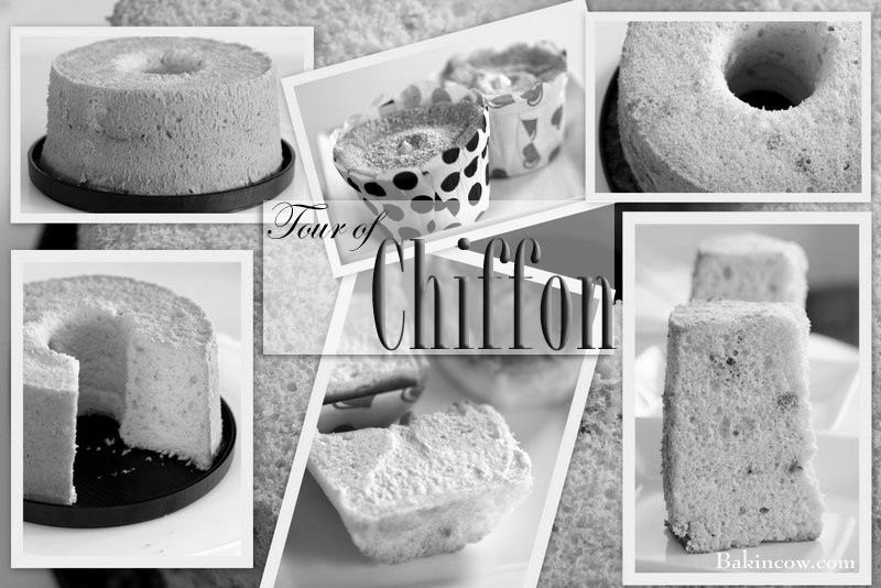 Tour of Chiffon b&w.jpg
