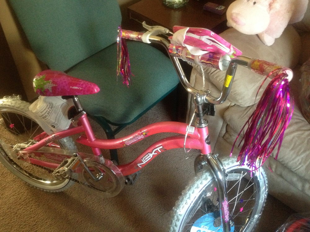 A bike from last year's raffle. We will be having bikes again this year! (But not this specific one)