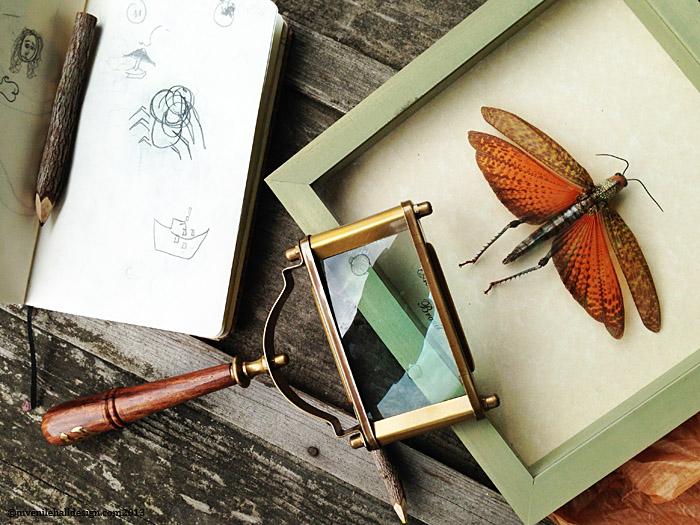 3.square magnify-sketch-juvenilehalldesign.com-blog.jpg