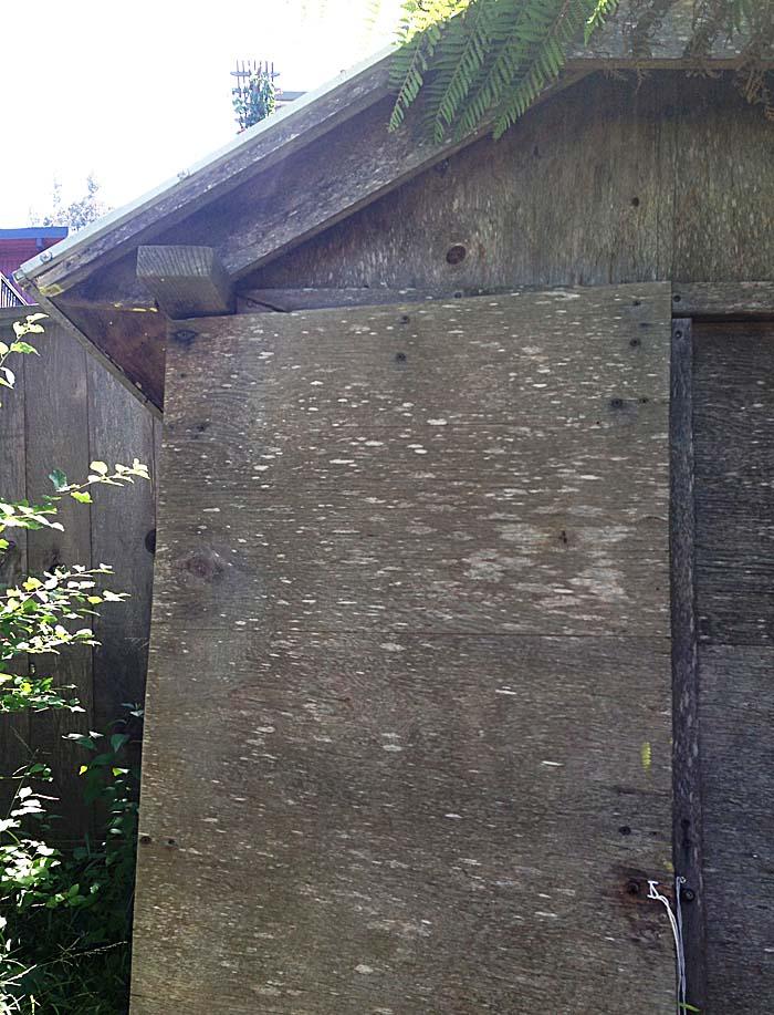 17.outside-shed.jpg