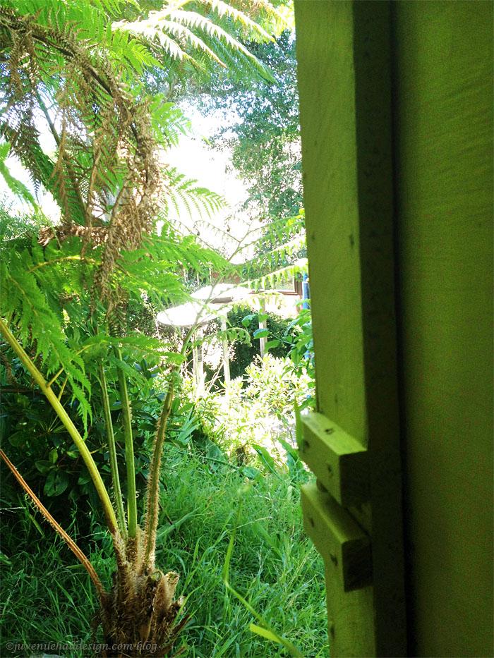 View from the door.