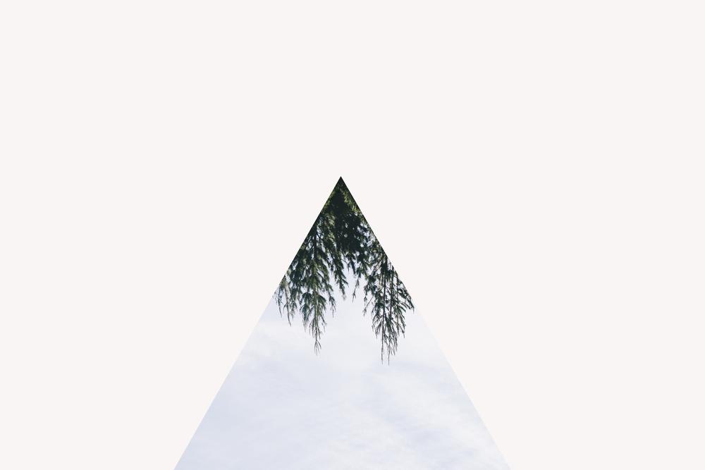 triangletree2 copy.jpg