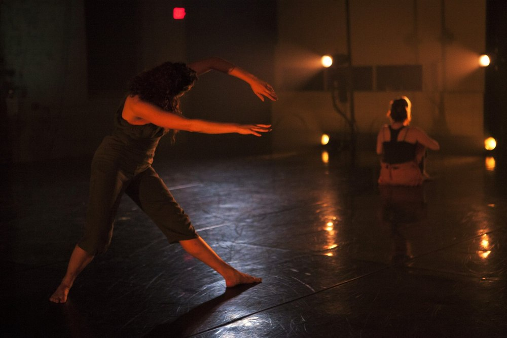 birds on a wire, dance, theater, theare, philadelphia dance, new dance work, choreographers
