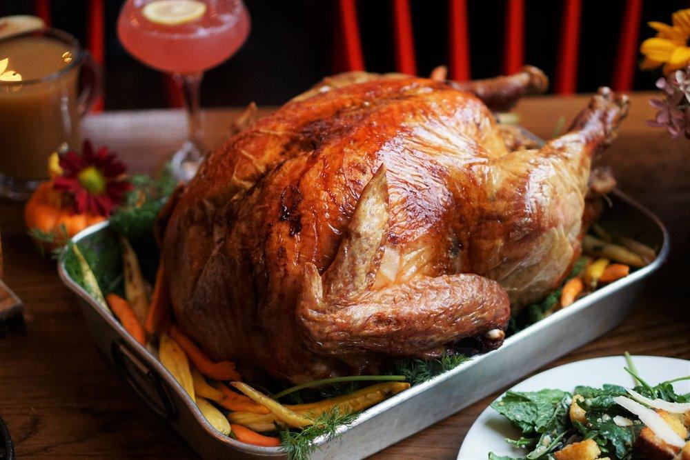 Turkey, Little Lion, Thanksgiving, Old City