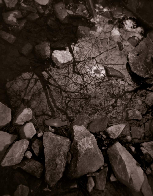 Water Music # 7.jpg