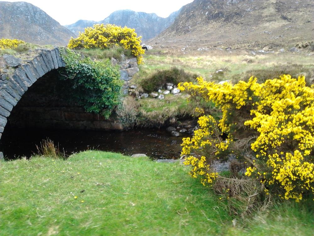 Bridge at Poisoned Glen.jpg