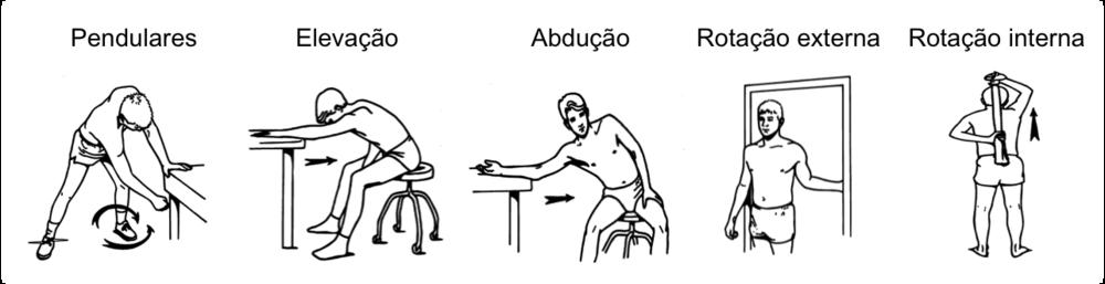 Exercícios utilizados para o ganho de movimento nos casos de capsulite adesiva