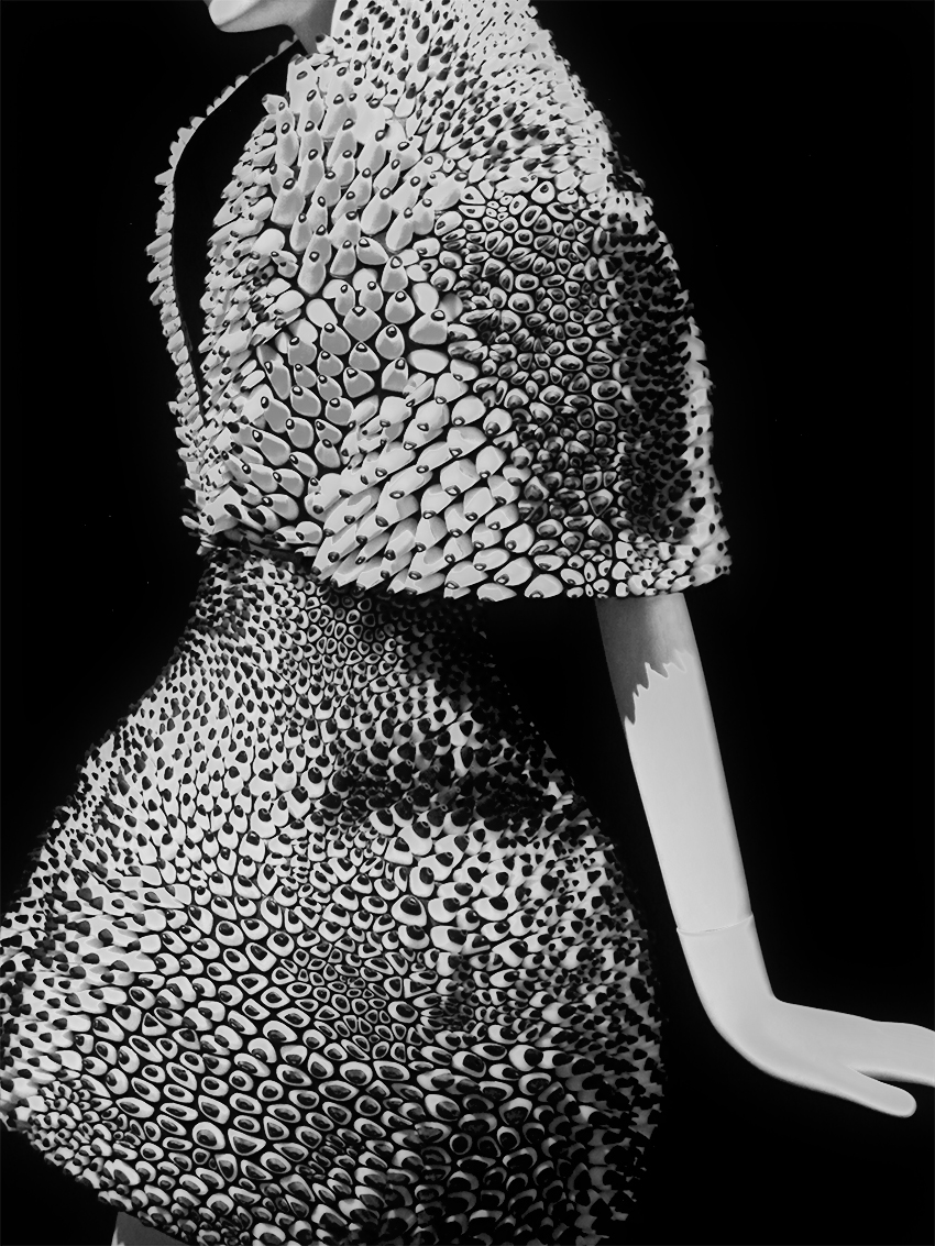 Cape and Skirt , Neri Oxman + Iris van Herpen, 2013