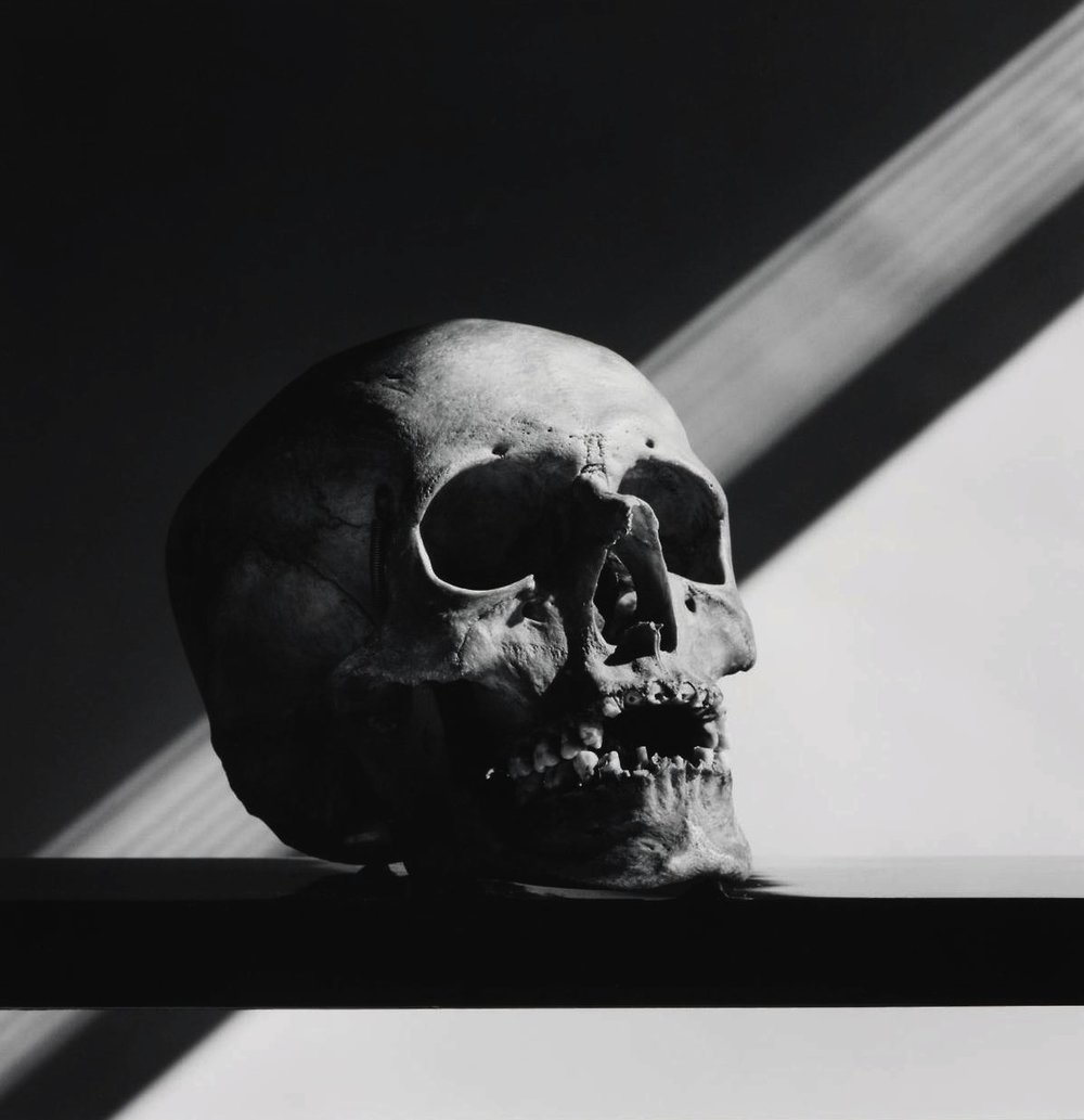Robert_Mapplethorpe-Skull-1988-hughlippe.jpg