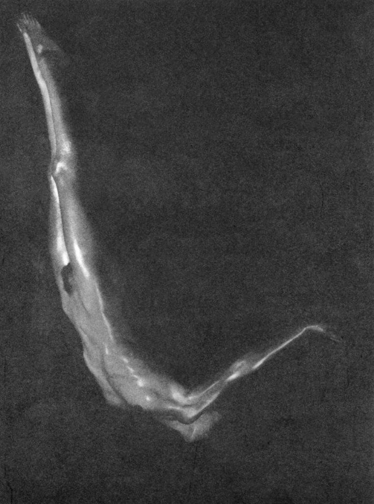 Maurice_Beck-Plunge-1933.jpg